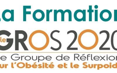 Validation de la formation du GROS 2020 !